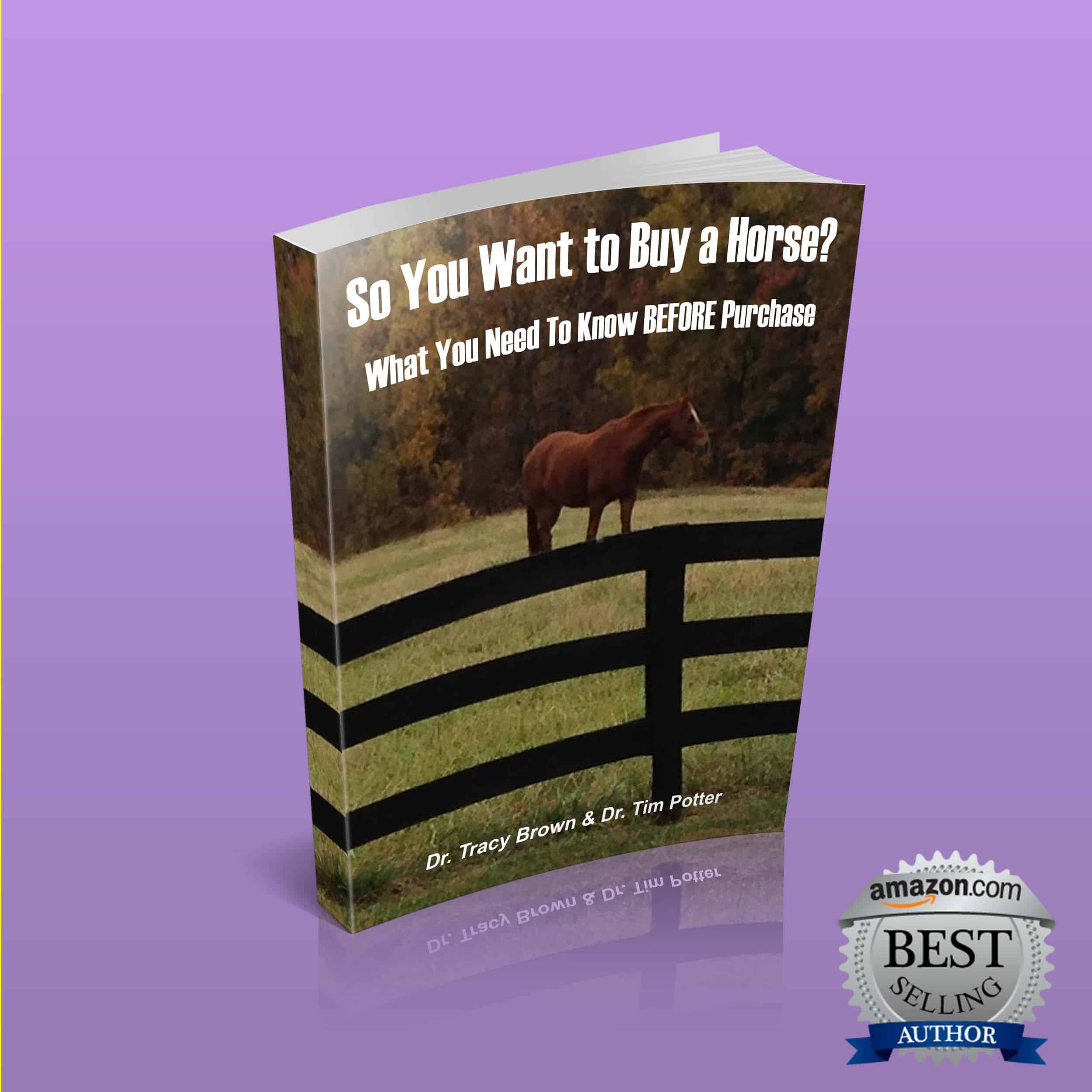 So You Want To Buy A Horse?
